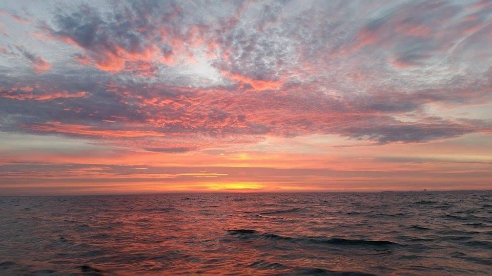 Meerforellenguiding Ostsee
